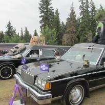 Borden Park Car Show