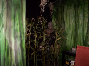 Creepy Corn Field Area